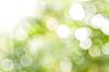 봄 배경 | Stock Foto