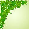 ID 3050840 | Natürliche Ecke mit grünen Blättern | Stock Vektorgrafik | CLIPARTO