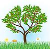 вишневое дерево с травой и цветами