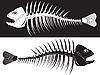 Skelette von Fischen