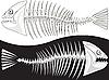 Kości szkieletu ryby | Stock Vector Graphics