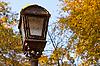 在秋季公园彩灯 | 免版税照片