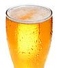 在玻璃啤酒 | 免版税照片