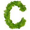 Buchstabe C des grünen Blättern Alphabet