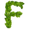 Buchstabe F der grünen Blätter Alphabet