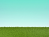 Grünes Gras   Stock Illustration