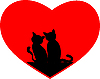 schwarze Katzen auf rotem Herz