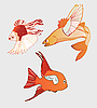 Fantastic Flying Fish | Stock Vector Graphics