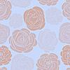 与精致的玫瑰图案 | 向量插图