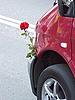 ID 3042728 | Piękna róża i samochód | Foto stockowe wysokiej rozdzielczości | KLIPARTO