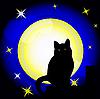 Vollmond und schwarze Katze