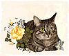 Старинная открытка с кошкой | Векторный клипарт