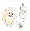Hund und Katzen