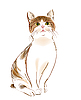 Рыжеватая кошка | Векторный клипарт