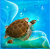 海龟在海洋中游泳 | 向量插图