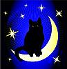 Mond und schwarze Katze
