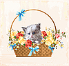 老式贺卡与蓬松的小猫 | 向量插图