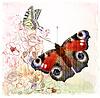 Schmetterlinge und Rosen