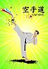 Poster mit Karatekämpfer