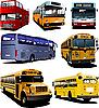Sieben Stadtbusse