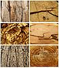 Holztexturen   Stock Foto