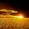 ID 3049367 | Krajobrazu wiejskiego | Foto stockowe wysokiej rozdzielczości | KLIPARTO