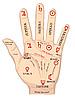 Handfläche mit deт Schicksal-Linien