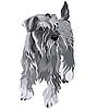 Zwergschnauzer Hund | Stock Vektrografik