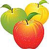 Zestaw kolorowych jabłek | Stock Vector Graphics