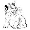 귀여운 작은 솜 털 고양이 | Stock Vector Graphics