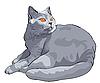Kurzhaar-Katze liegt und schaut | Stock Vektrografik