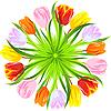 Kreis von bunten Tulpen