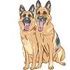 ID 3297591 | Color sketch two dog German shepherd breed | Klipart wektorowy | KLIPARTO