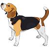ID 3341151 | Skizze des Hundes Rasse Beagle | Stock Vektorgrafik | CLIPARTO