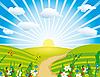 Łąki kwitnienia | Stock Vector Graphics