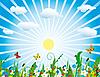 太阳开花草甸 | 向量插图