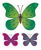 蝴蝶 | 向量插图