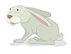 灰色的野兔 | 向量插图