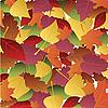 Hintergrund von herbstlichen Blättern