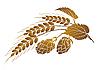 Векторный клипарт: Хмель и пшеница