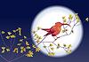 Colibri Hintergrund der Mond