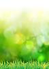 ID 3295923 | Naturalnym zielonym tle | Klipart wektorowy | KLIPARTO