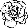 Schwarzweiße Skizze einer Rose | Stock Vektrografik