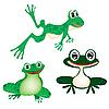 grüne Frosche
