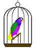 Papagei im Bauer