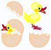 Ei und neugeborenes Küken