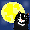 黑猫和月亮 | 向量插图