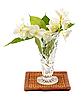 Jasmine w kryształowym wazonie | Stock Foto