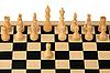 ID 3060711 | Erster Schritt im Schach | Foto mit hoher Auflösung | CLIPARTO