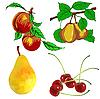 Set von Früchten - Birne, Kirsche und Pfirsich